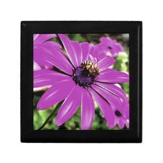 Honey Bee On a Spring Flower Small Square Gift Box