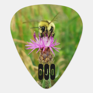 Honey Bee on Purple Blossom your Initials Plectrum