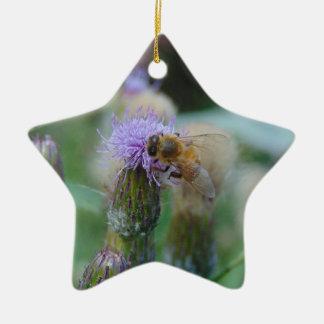 Honey Bee on Thistles Ceramic Star Decoration