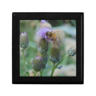Honey Bee on Thistles Small Square Gift Box