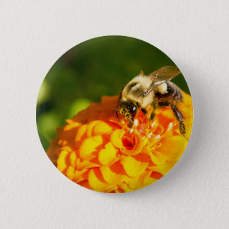 Honey Bee  Orange Yellow Flower With Pollen Sacs 6 Cm Round Badge