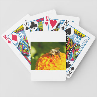 Honey Bee  Orange Yellow Flower With Pollen Sacs Bicycle Playing Cards