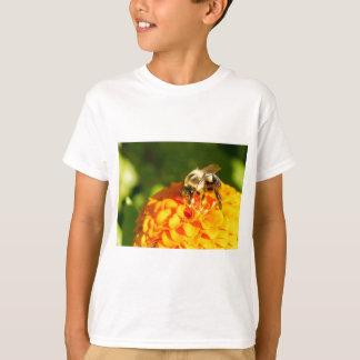 Honey Bee  Orange Yellow Flower With Pollen Sacs T-Shirt