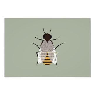 Honey bee photo art