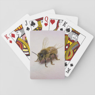 honey bee playing cards