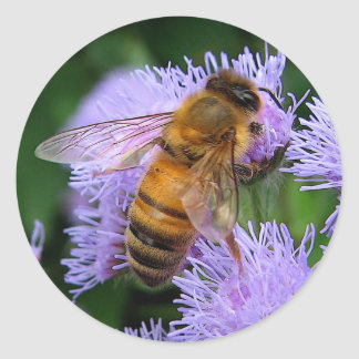 Honey Bee Round Sticker