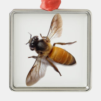 Honey Bee Silver-Colored Square Decoration