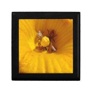 Honey Bee Traffic Jam Small Square Gift Box