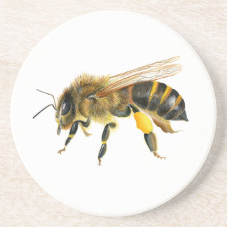 Honey Bee Watercolour Painting Artwork Print Coaster