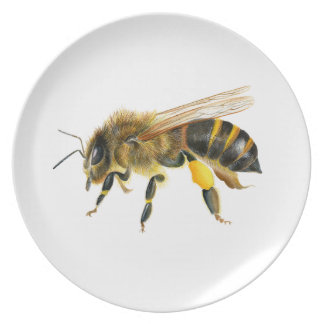 Honey Bee Watercolour Painting Artwork Print Plate