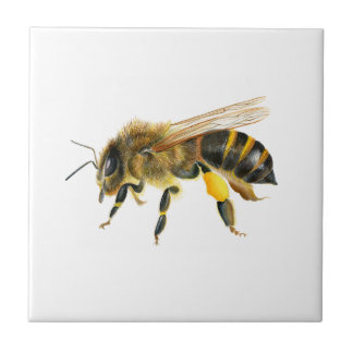 Honey Bee Watercolour Painting Artwork Print Small Square Tile