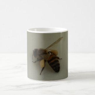 Honey Bee White Coffee Mug