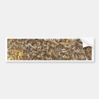 honey bees and more honey bees bumper sticker