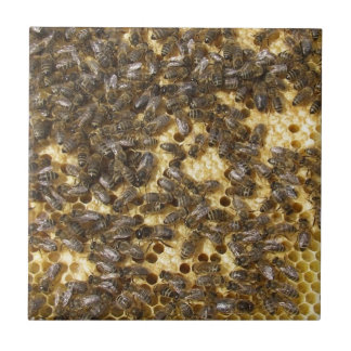 Honey Bees everywhere Ceramic Tile