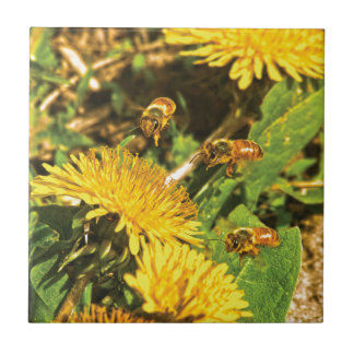 Honey Bees Flying Around Dandelions Small Square Tile