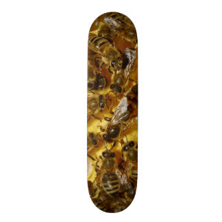 Honey Bees in Hive with Queen in Middle 19.7 Cm Skateboard Deck