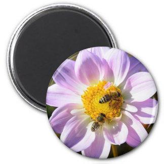Honey Bees on  Flower Floral Magnet