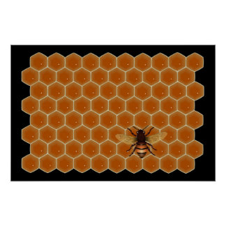 Honey Bees Poster