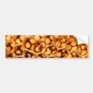 Honey Comb Bumper Sticker