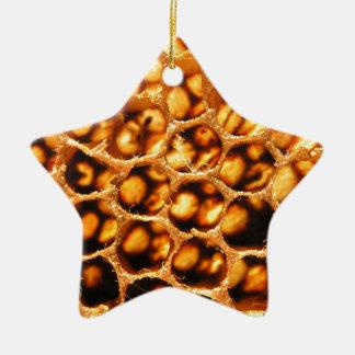 Honey Comb Ceramic Star Decoration