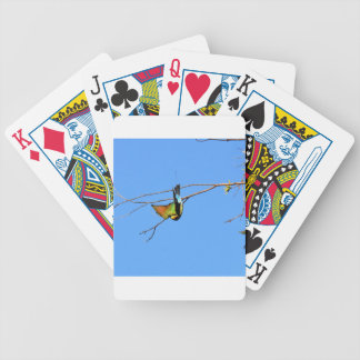 HONEY EATER RURAL QUEENSLAND AUSTRALIA BICYCLE PLAYING CARDS
