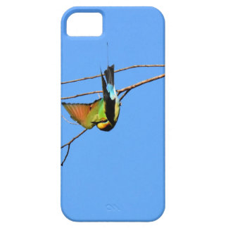 HONEY EATER RURAL QUEENSLAND AUSTRALIA iPhone 5 COVER