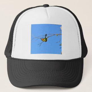 HONEY EATER RURAL QUEENSLAND AUSTRALIA TRUCKER HAT