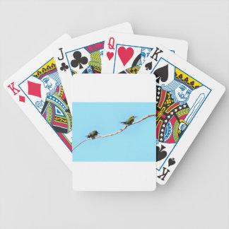 HONEY ETAER BIRD QUEENSLAND AUSTRALIA BICYCLE PLAYING CARDS