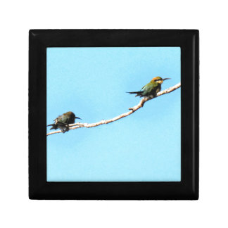 HONEY ETAER BIRD QUEENSLAND AUSTRALIA SMALL SQUARE GIFT BOX