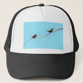 HONEY ETAER BIRD QUEENSLAND AUSTRALIA TRUCKER HAT