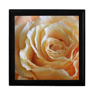 Honey Peach Rose Large Square Gift Box
