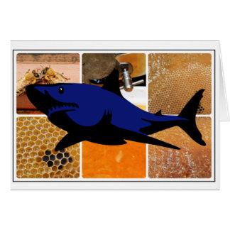 Honey Shark Card