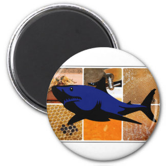 Honey Shark Magnet