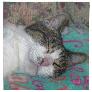 Honey Sleeping Napkin