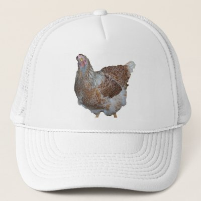 Chickens are Beautiful Drawing Cute Animal Art Trucker Hat | Zazzle com au