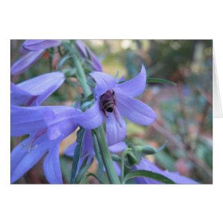 Honeybee in Harebell Card