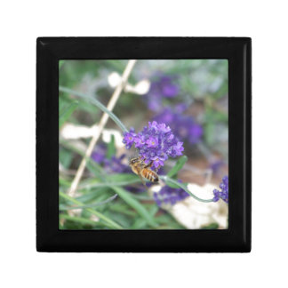 Honeybee on Lavender Small Square Gift Box