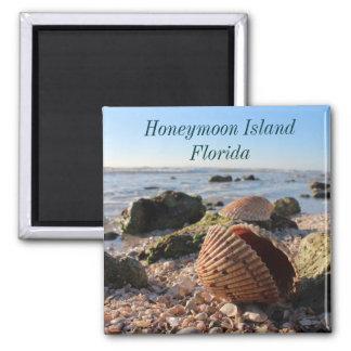 Honeymoon Island Florida Romantic Seashells magnet