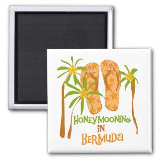 Honeymooning in Bermuda Magnet