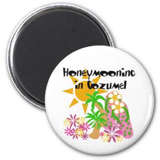 Honeymooning in Cozumel 6 Cm Round Magnet