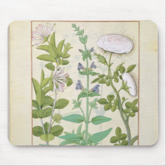 Honeysuckle, Sage and Rose Mouse Pad