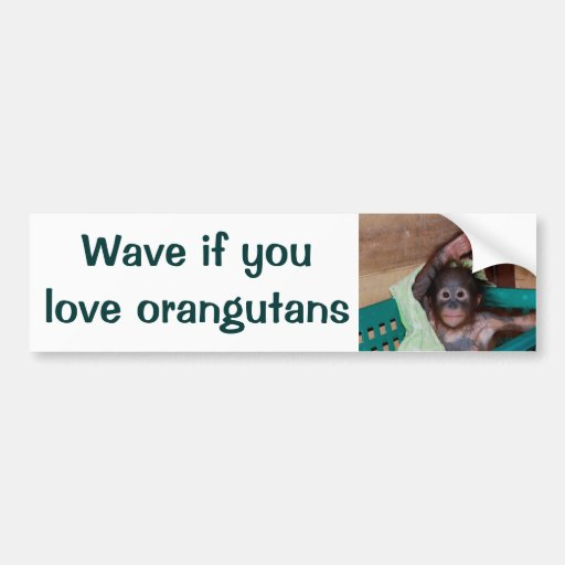 Honk or Wave If You Love Orangutans Bumper Stickers