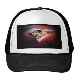 Hood Ornament Hat