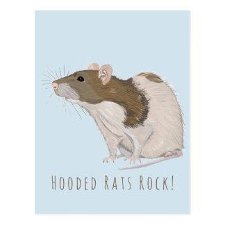 Hooded Rats Rock Agouti Hooded Rat Postcard