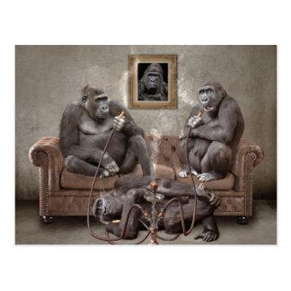 Hookah Smoking Apes Post Card