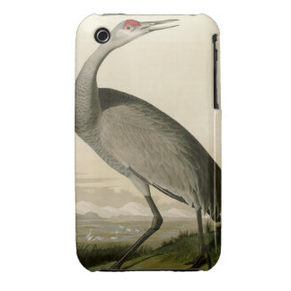 Hooping Crane iPhone 3 Cases