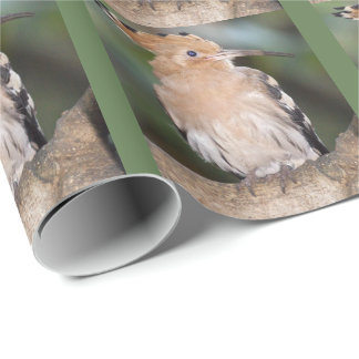 Hoopoe Wrapping Paper