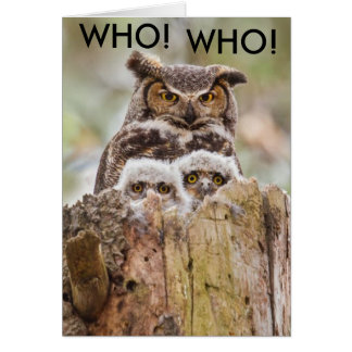 Hoot Owls Fathers Day Card