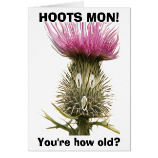Hoots Mon! Greeting Card