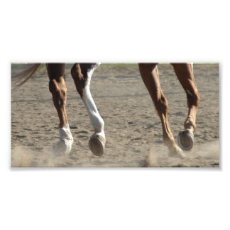 Hooves in Motion Photo Print